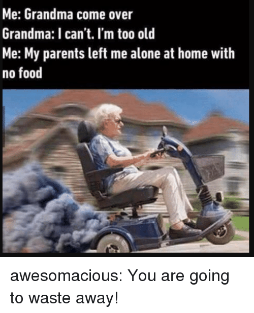 Being Alone, Come Over, and Food: Me: Grandma come over  Grandma: I can't. I'm too old  Me: My parents left me alone at home with  no food awesomacious:  You are going to waste away!