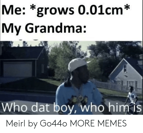 Dank, Grandma, and Memes: Me: *grows 0.01cm *  My Grandma:  Who dat boy, who him is Meirl by Go44o MORE MEMES