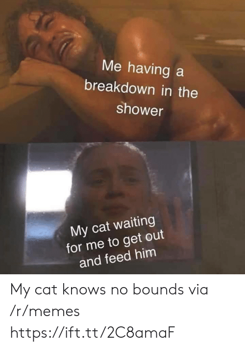 breakdown: Me having a  breakdown in the  shower  My cat waiting  for me to get out  and feed him My cat knows no bounds via /r/memes https://ift.tt/2C8amaF