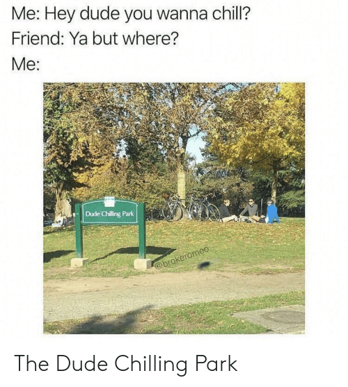 Chill, Dude, and Friend: Me: Hey dude you wanna chill?  Friend: Ya but where?  Me:  Dude Chilling Park  @brokeromeo The Dude Chilling Park