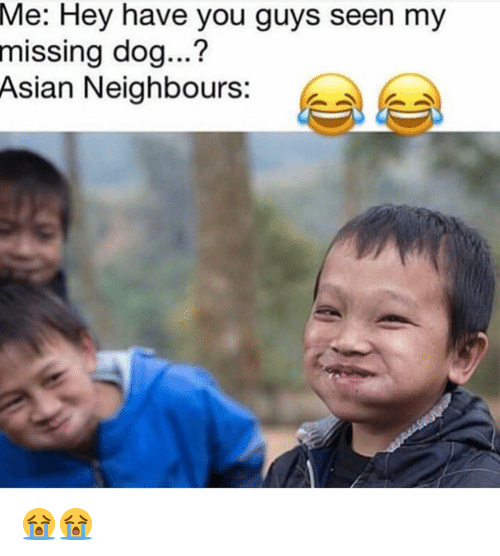 Asian, Memes, and 🤖: Me:  Hey have you guys seen my  missing dog...?  Asian Neighbours: e 😭😭
