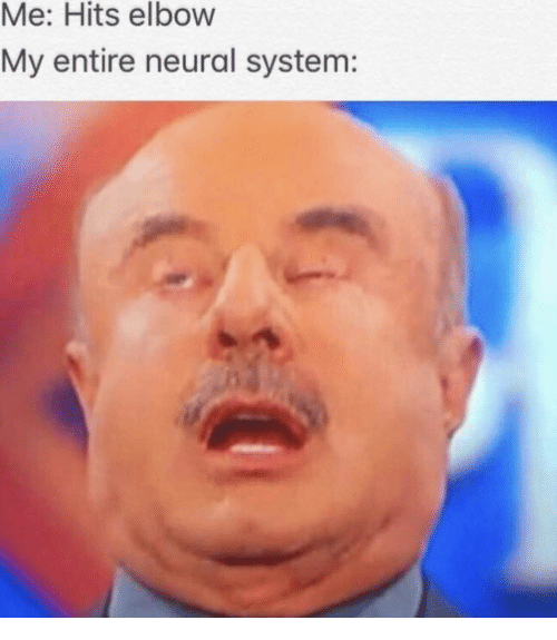 Neural: Me: Hits elbow  My entire neural system: