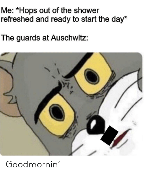 Auschwitz: Me: *Hops out of the shower  refreshed and ready to start the day*  The guards at Auschwitz: Goodmornin'