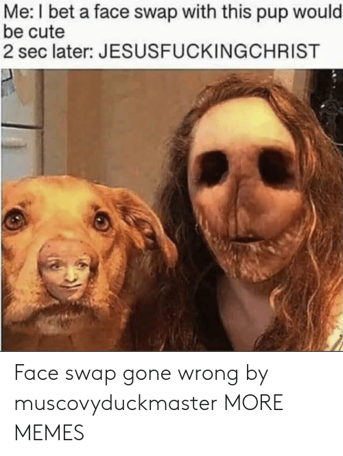 Gone Wrong: Me: I bet a face swap with this pup would  be cute  2 sec later: JESUSFUCKINGCHRIST Face swap gone wrong by muscovyduckmaster MORE MEMES