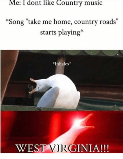 """Inhales: Me: I dont like Country music  *Song """"take me home, country roads""""  starts playing*  *Inhales  ESTGINIA!!!"""