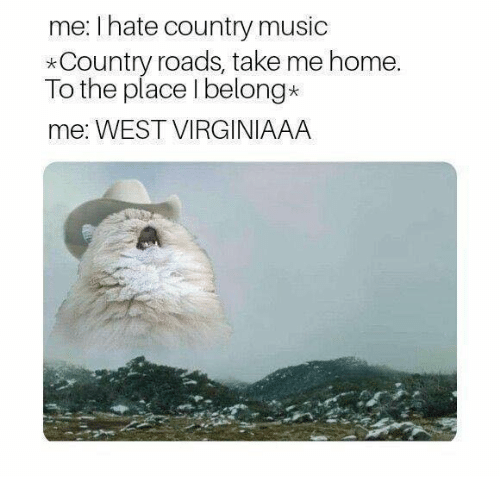Country music: me: I hate country music  *Country roads, take me home  To the place I belong*  me: WEST VIRGINIAAA
