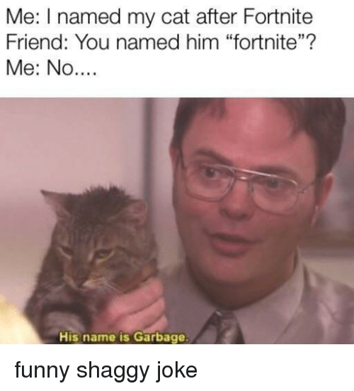 """Funny, Cat, and Shaggy: Me: I named my cat after Fortnite  Friend: You named him """"fortnite""""?  Me: No....  His name is Garbage funny shaggy joke"""