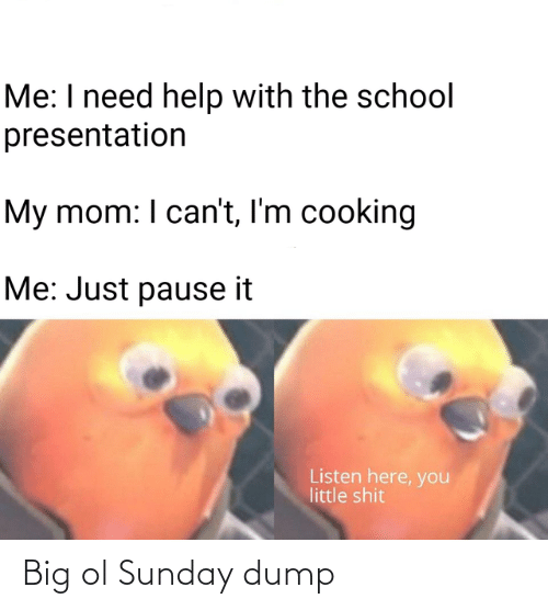 Little Shit: Me: I need help with the school  presentation  My mom: I can't, I'm cooking  Me: Just pause it  Listen here, you  little shit Big ol Sunday dump