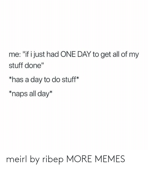 "All Of: me: ""if i just had ONE DAY to get all of my  stuff done""  *has a day to do stuff*  *naps all day* meirl by ribep MORE MEMES"