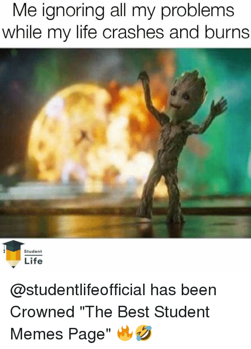 """Memes Page: Me ignoring all my problems  while my life crashes and burns  Student  Life @studentlifeofficial has been Crowned """"The Best Student Memes Page"""" 🔥🤣"""