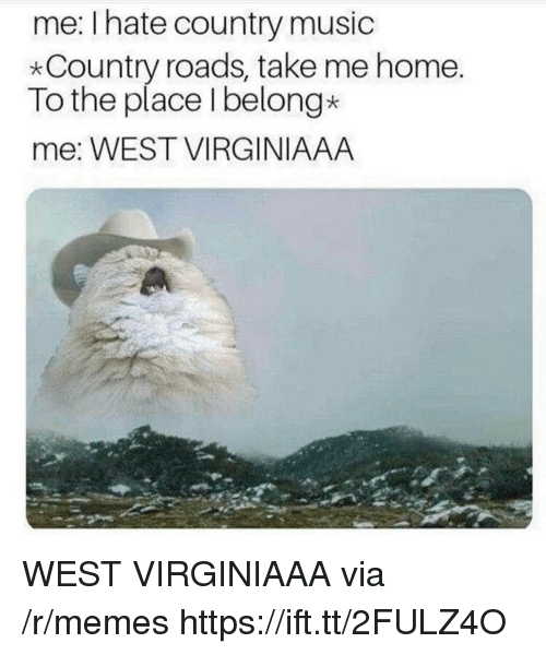 Memes, Music, and Country Music: me: Ihate country music  *Country roads, take me home.  To the place Ibelong*  me: WEST VIRGINIAAA WEST VIRGINIAAA via /r/memes https://ift.tt/2FULZ4O