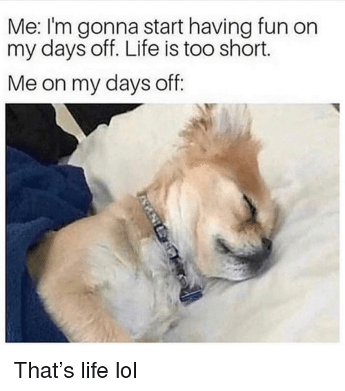 Funny, Life, and Lol: Me: I'm gonna start having fun on  my days off. Life is too short.  Me on my days off: That's life lol