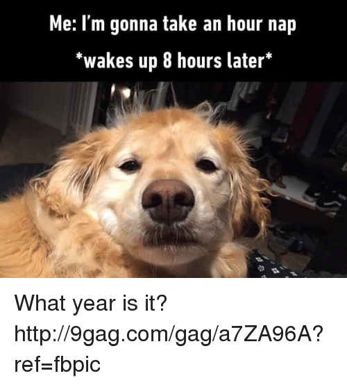 "what year is it: Me: I'm gonna take an hour nap  ""wakes up 8 hours later What year is it? http://9gag.com/gag/a7ZA96A?ref=fbpic"