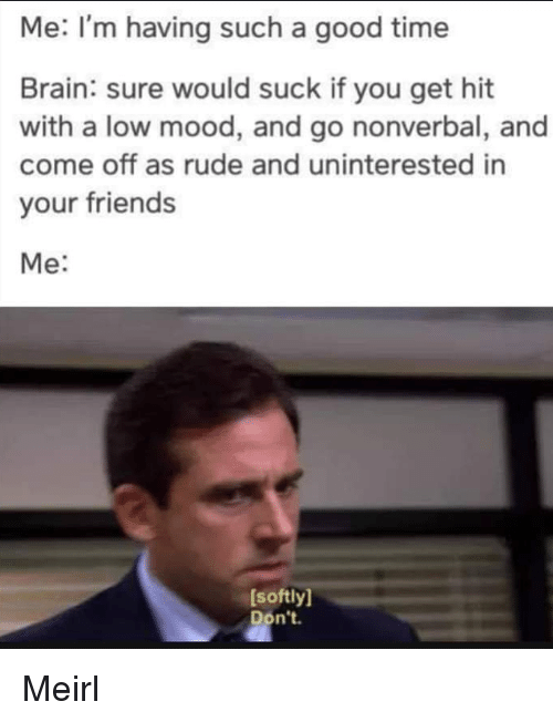 Friends, Mood, and Rude: Me: I'm having such a good time  Brain: sure would suck if you get hit  with a low mood, and go nonverbal, and  come off as rude and uninterested in  your friends  Me:  [softly]  Don't. Meirl