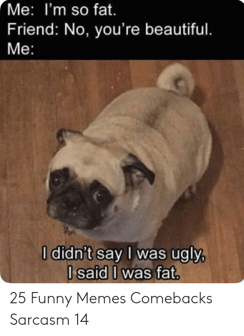 Beautiful, Funny, and Memes: Me: I'm so fat.  Friend: No, you're beautiful.  Ме:  I didn't say I was ugly,  I said I was fat. 25 Funny Memes Comebacks Sarcasm 14