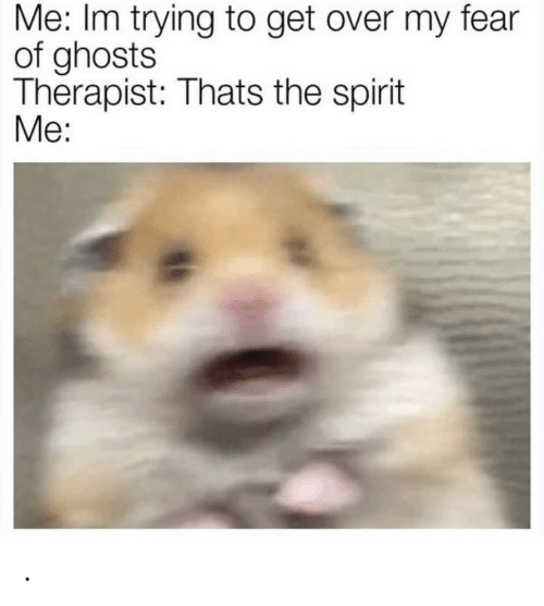 Thats The Spirit: Me: Im trying to get over my fear  of ghosts  Therapist: Thats the spirit  Me: .