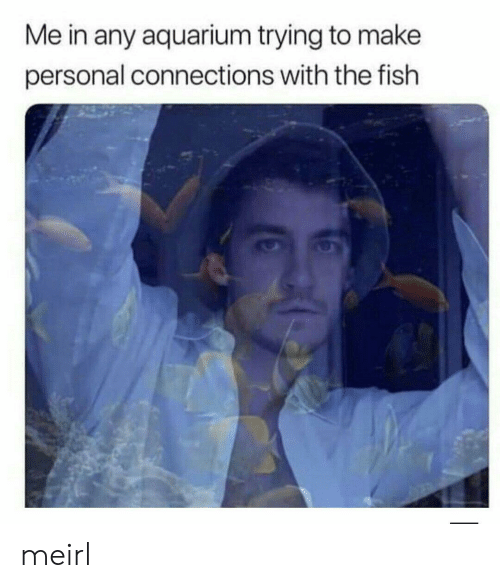 Aquarium: Me in any aquarium trying to make  personal connections with the fish meirl