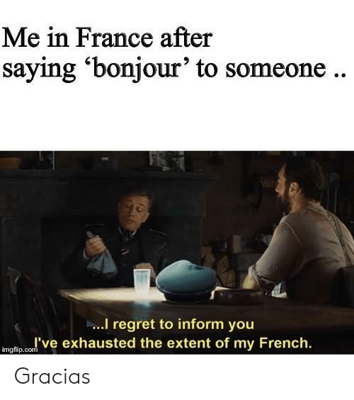 France: Me in France after  saying 'bonjour' to someone..  I regret to inform you  I've exhausted the extent of my French  imgflip.com Gracias