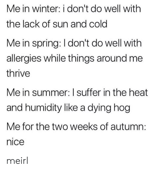 Winter, Summer, and Heat: Me in winter: i don't do well with  the lack of sun and cold  Me in spring: I don't do well with  allergies while things around me  thrive  Me in summer: I suffer in the heat  and humidity like a dying hog  Me for the two weeks of autumn:  nice meirl