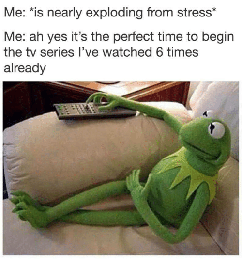 "Time, Yes, and Stress: Me: ""is nearly exploding from stress*  Me: ah yes it's the perfect time to begin  the tv series l've watched 6 times  already"