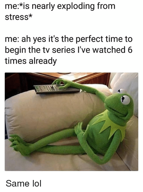 Funny, Lol, and Time: me:*is nearly exploding from  stress*  me: ah yes it's the perfect time to  begin the tv series l've watched 6  times already Same lol