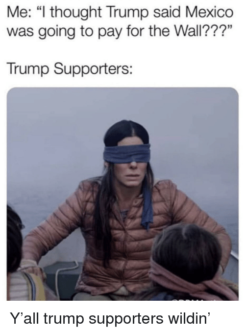 """Mexico, Trump, and Thought: Me: """"l thought Trump said Mexico  was going to pay for the Wall???""""  Trump Supporters: Y'all trump supporters wildin'"""