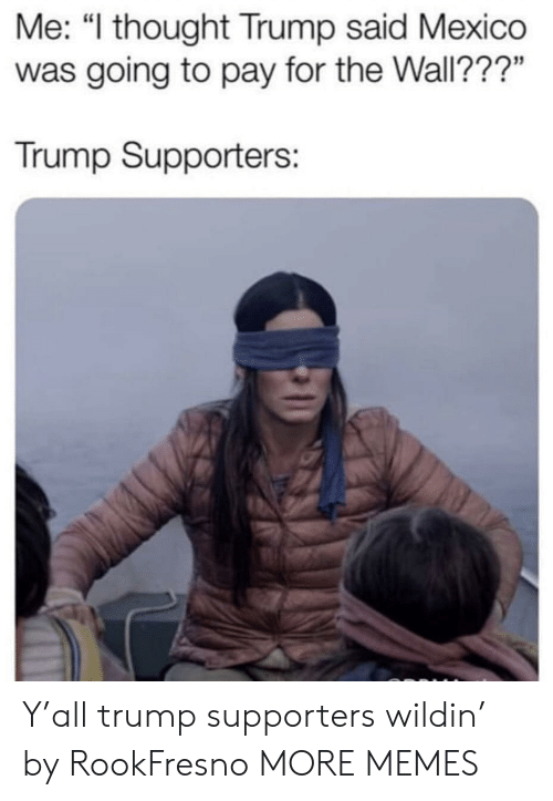 """Dank, Memes, and Target: Me: """"l thought Trump said Mexico  was going to pay for the Wall???""""  Trump Supporters: Y'all trump supporters wildin' by RookFresno MORE MEMES"""
