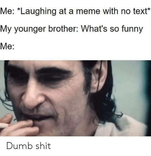 """Laughing At: Me: """"Laughing at a meme with no text  My younger brother: What's so funny  Me: Dumb shit"""