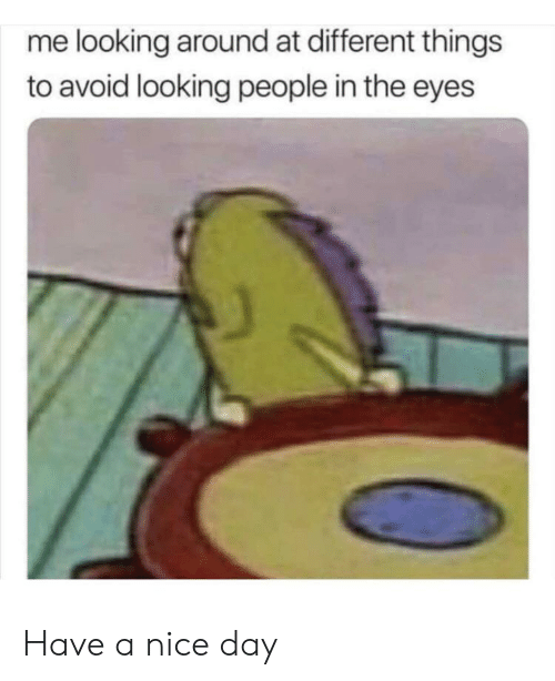 SpongeBob, Nice, and Looking: me looking around at different things  to avoid looking people in the eyes Have a nice day
