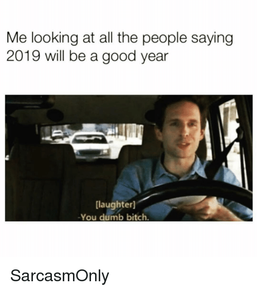 A Good Year: Me looking at all the people saying  2019 will be a good year  [laughter]  -You dumb bitch. SarcasmOnly