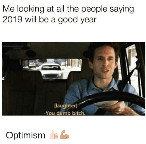 A Good Year: Me looking at all the people saying  2019 will be a good year  laughter]  -You dumb bitch. Optimism 👍🏻💪🏽