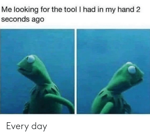 Tool: Me looking for the tool I had in my hand 2  seconds ago Every day