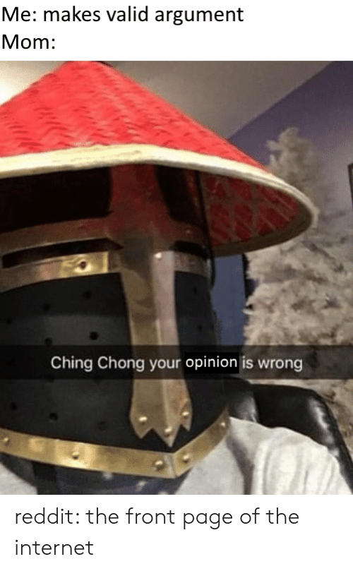 Internet, Reddit, and Mom: Me: makes valid argument  Mom:  Ching Chong your opinion is wrong reddit: the front page of the internet
