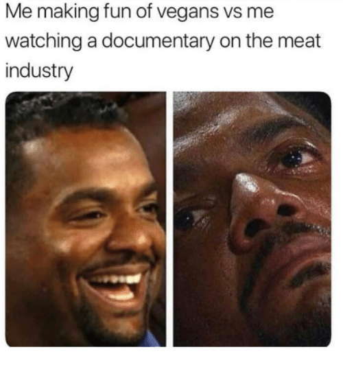 Humans of Tumblr, Fun, and Meat: Me making fun of vegans vs me  watching a documentary on the meat  industry