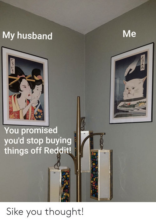 Buying: Me  My husband  You promised  you'd stop buying  things off Reddit! Sike you thought!