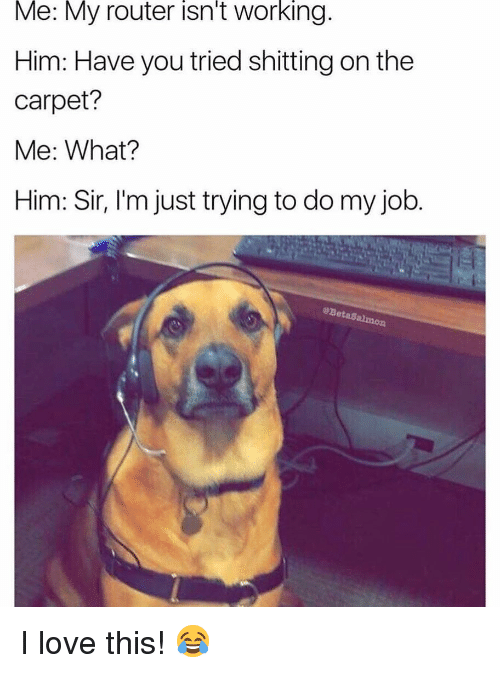 Trying To Do: Me: My router isn't working.  Him: Have you tried shitting on the  carpet?  Me: What?  Him: Sir, l'm just trying to do my job.  @BetaSalmon I love this! 😂