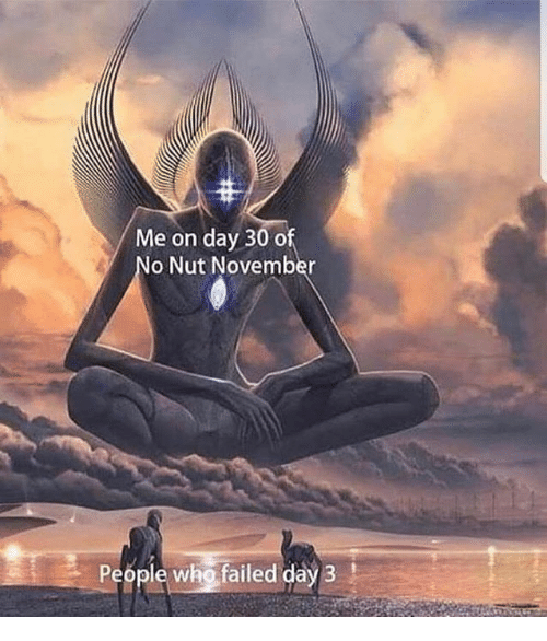 Memes, 🤖, and Who: Me on day 30 of  o Nut November  People who failed day 3