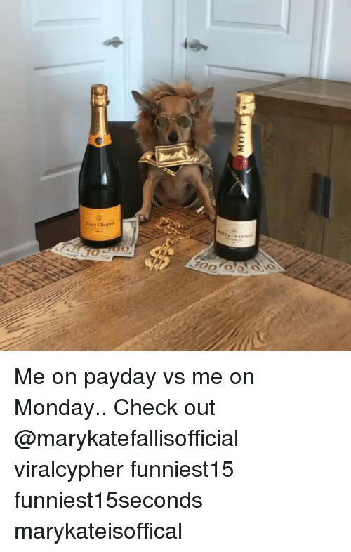 Funny, Monday, and Payday: Me on payday vs me on Monday.. Check out @marykatefallisofficial viralcypher funniest15 funniest15seconds marykateisoffical