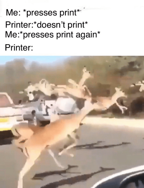 Printer,  Again, and Print: Me: presses print'  Printer:*doesn't print*  Me:*presses print again*  Printer: