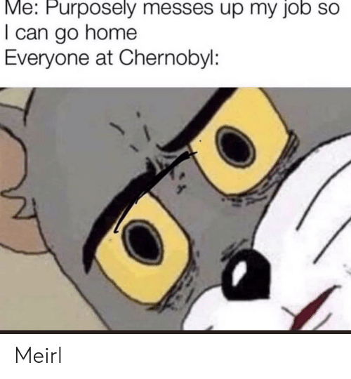Home, MeIRL, and Job: Me: Purposely messes up my job so  I can go home  Everyone at Chernobyl: Meirl
