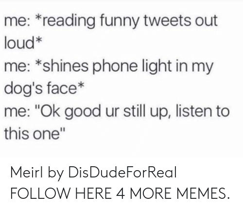 """Dank, Dogs, and Funny: me: *reading funny tweets out  loud*  me: *shines phone light in my  dog's face*  me: """"Ok good ur still up, listen to  this one"""" Meirl by DisDudeForReal FOLLOW HERE 4 MORE MEMES."""