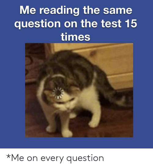 Reddit, Test, and Reading: Me reading the same  question on the test 15  times *Me on every question