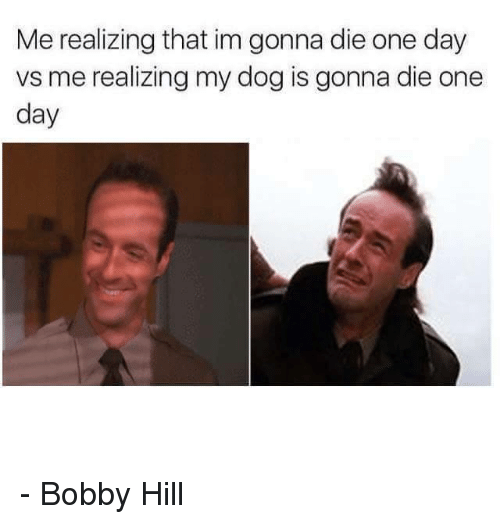 Bobby Hill: Me realizing that im gonna die one day  vs me realizing my dog is gonna die one  day - Bobby Hill