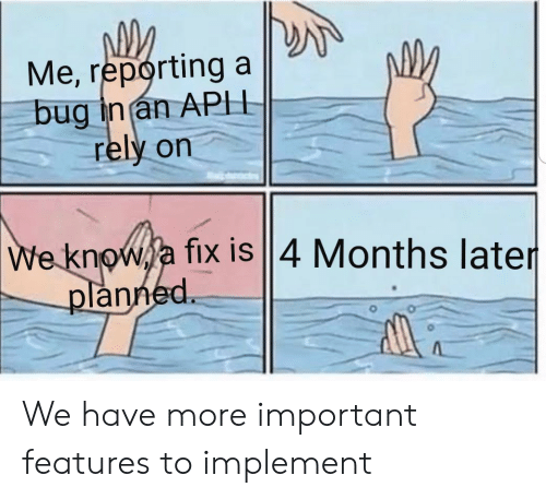 Bug, Months, and Reporting: Me, reporting  bug in an APH  rely on  We knowja fix is ||4 Months later  planned We have more important features to implement