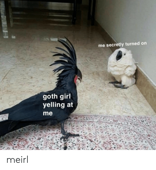 turned on: me secretly turned on  goth girl  yelling at  me meirl