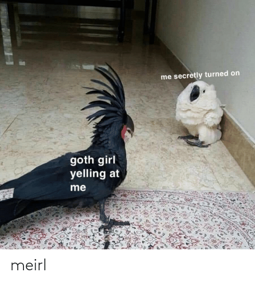 goth: me secretly turned on  goth girl  yelling at  me meirl