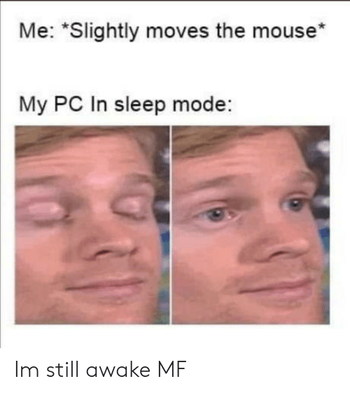 "moves: Me: ""Slightly moves the mouse*  My PC In sleep mode: Im still awake MF"