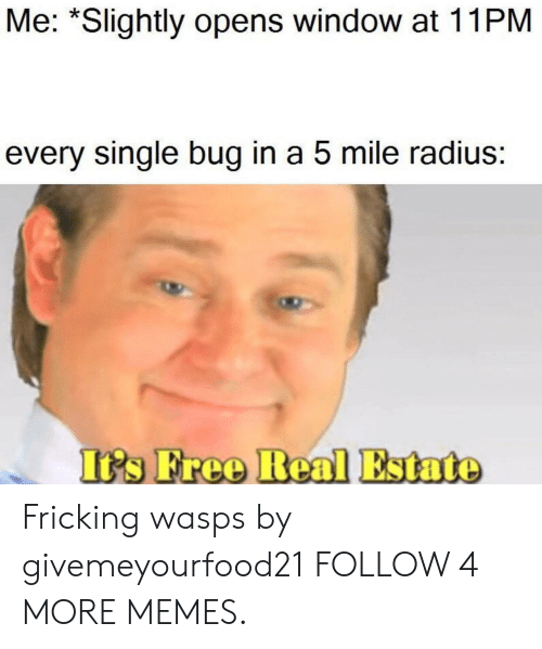 Dank, Memes, and Reddit: Me: *Slightly opens window at 11PM  every single bug in a 5 mile radius:  It's Free Real Estate Fricking wasps by givemeyourfood21 FOLLOW 4 MORE MEMES.
