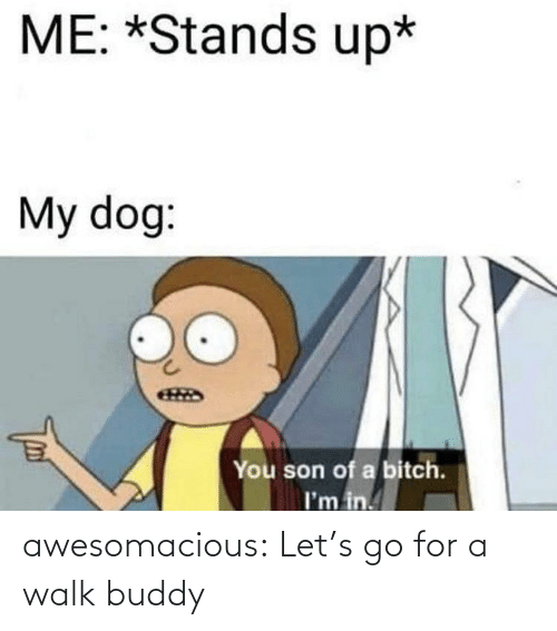buddy: ME: *Stands up*  My dog:  You son of a bitch.  I'm in. awesomacious:  Let's go for a walk buddy