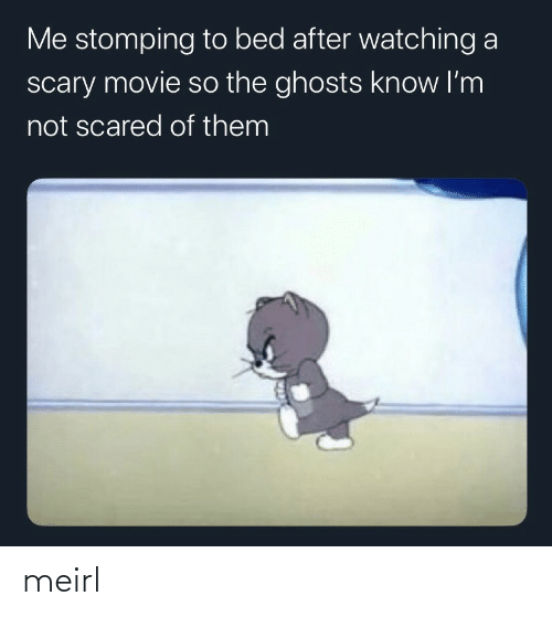 Movie, Scary Movie, and MeIRL: Me stomping to bed after watching a  scary movie so the ghosts know I'm  not scared of them meirl